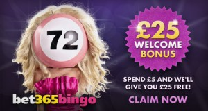 Break the Bank Bingo Review –Is this A Scam Site to Avoid
