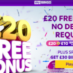 Sky Bingo Review